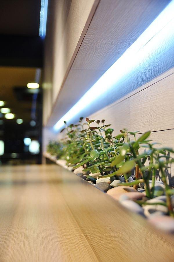 Фотография: Декор в стиле Современный, Эклектика, Эко, Декор интерьера, Мебель и свет, освещение – фото на INMYROOM