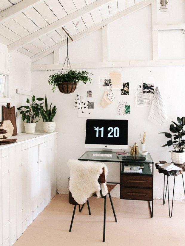 Фотография: Офис в стиле Скандинавский, Флористика, Стиль жизни – фото на INMYROOM