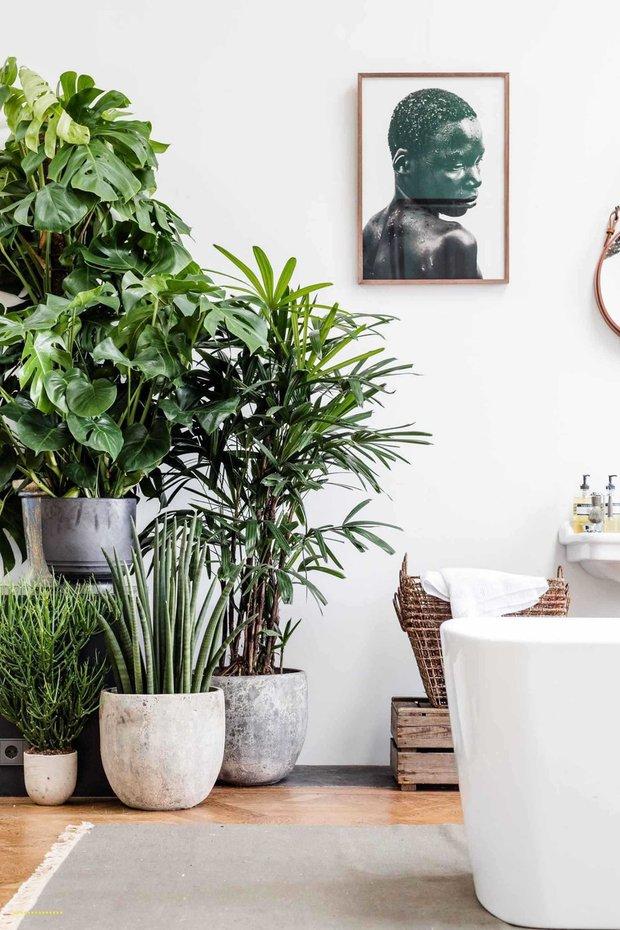 Фотография: Ванная в стиле Современный, Советы, фэншуй, Мария Мамонова – фото на INMYROOM