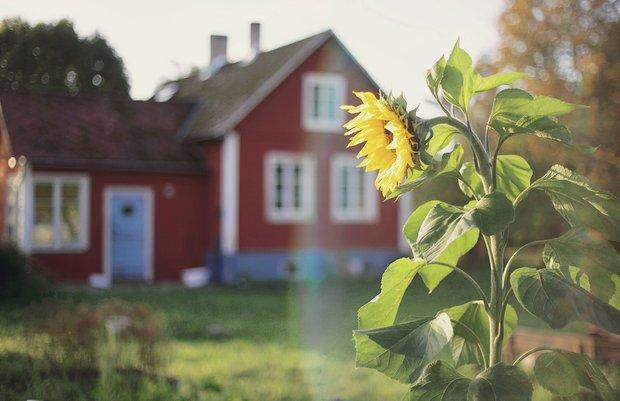 Фотография:  в стиле , Декор интерьера, Дом, Швеция, Дача, Розовый, как оформить летний дом – фото на InMyRoom.ru