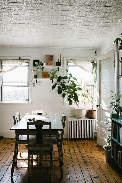 Фотография: Кухня и столовая в стиле Скандинавский, Малогабаритная квартира, Квартира, Флористика, Стиль жизни, Зимний сад – фото на INMYROOM