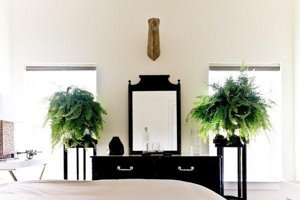 Фотография: Спальня в стиле Современный, Декор интерьера, Флористика, Декор, Советы – фото на INMYROOM