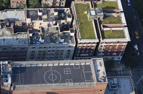 Фотография: Ландшафт в стиле , Дома и квартиры, Городские места, Нью-Йорк – фото на INMYROOM