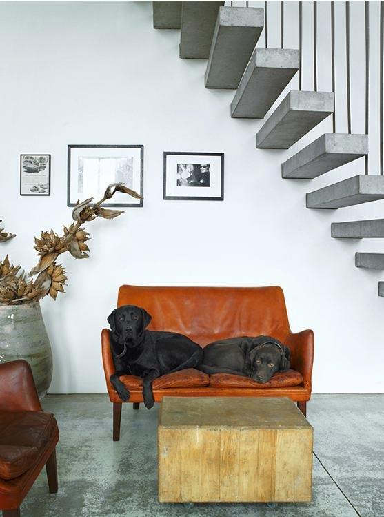 Фотография: Гостиная в стиле Современный, Декор интерьера, Мебель и свет, Декор дома, Кресло – фото на INMYROOM