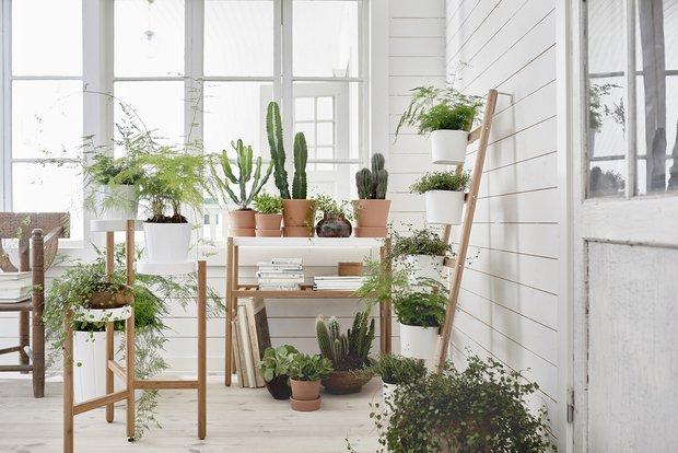 Фотография: Балкон в стиле Скандинавский, Декор интерьера, Советы, растения в интерьере, Vibe Life Technologies – фото на INMYROOM