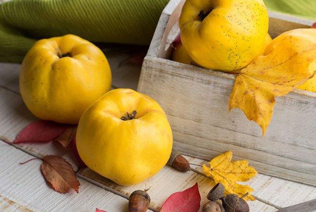 Фотография:  в стиле , покупки, Обзоры, Осень – фото на INMYROOM