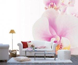 Фотография:  в стиле , Декор интерьера, Декор дома, Обои, Стены, Цветы, Фотообои – фото на INMYROOM