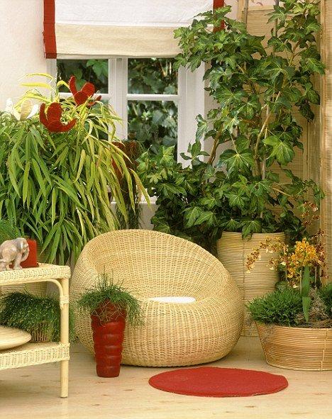 Фотография:  в стиле Современный, Декор интерьера, Декор дома, Советы, Маргарита Алексеева, Зимний сад – фото на INMYROOM