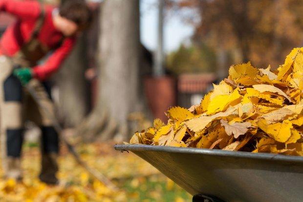 Фотография:  в стиле , Советы, GeekBrains, дача в ноябре, что делать на даче в ноябре – фото на INMYROOM