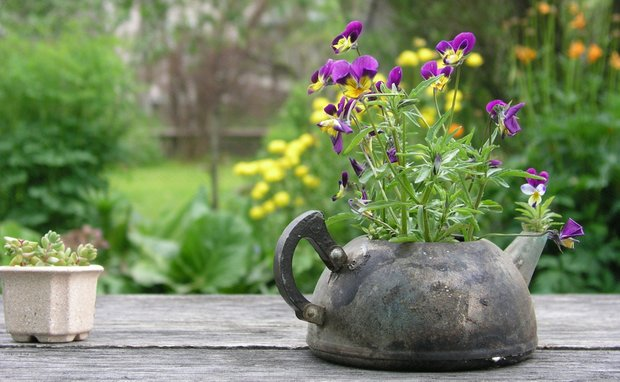 Фотография:  в стиле , Ландшафт, Советы, как преобразить дачный участок, как украсить сад, как обустроить 6 соток, сад своими руками – фото на INMYROOM