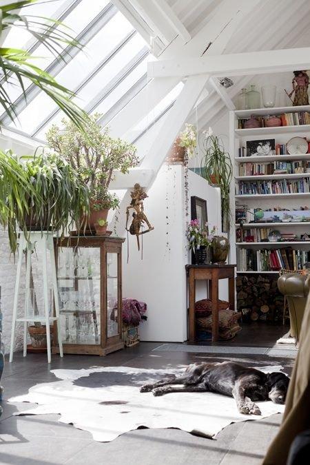 Фотография: Мебель и свет в стиле Скандинавский, Малогабаритная квартира, Квартира, Флористика, Стиль жизни, Зимний сад – фото на INMYROOM