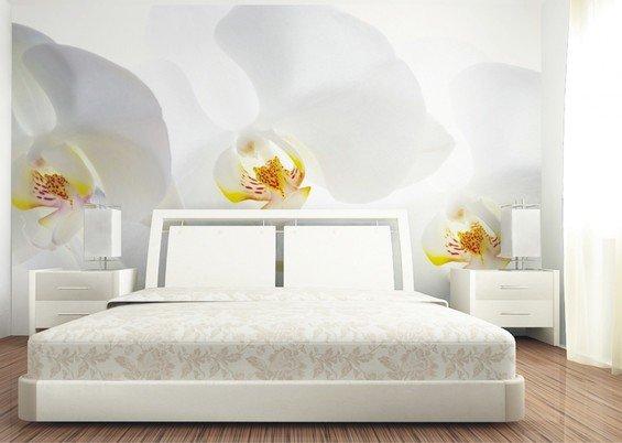 Фотография: Спальня в стиле Современный, Декор интерьера, Декор дома, Обои, Стены, Цветы, Фотообои – фото на INMYROOM