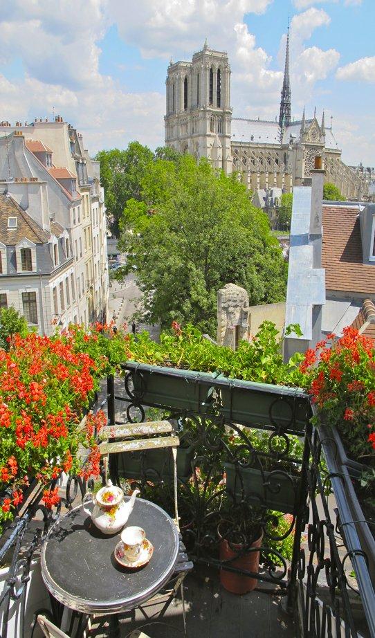Фотография:  в стиле , Балкон, Ландшафт, Терраса, Советы, Мария Шумская, огород на балконе, растения для южного балкона, растения для затененного балкона, растения на высоких этажах, как выбрать растения для балкона – фото на InMyRoom.ru