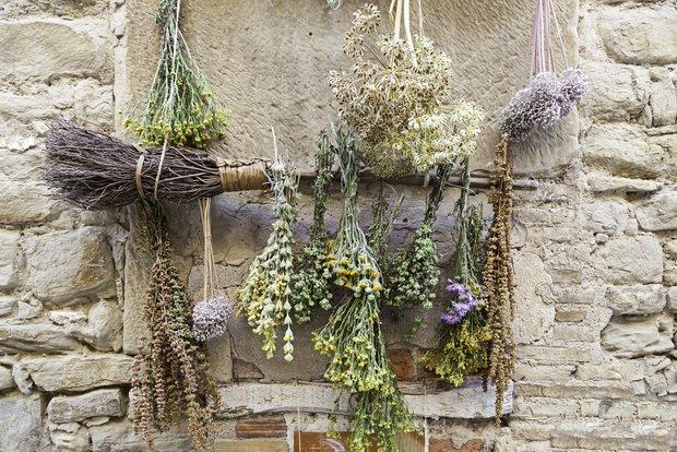 Фотография:  в стиле , Обзоры, Полезные продукты, Травы – фото на INMYROOM