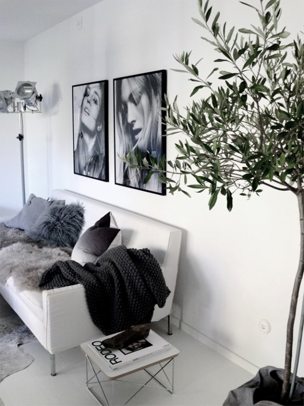 Фотография: Гостиная в стиле Скандинавский, Флористика, Стиль жизни – фото на INMYROOM