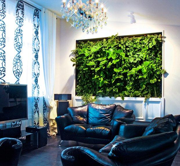 Фотография: Гостиная в стиле Современный, Квартира, Дома и квартиры, Фитостены – фото на INMYROOM