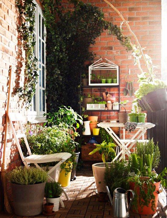 Фотография:  в стиле , Декор интерьера, DIY, Флористика, Декор, Советы, Дом и дача, цветы на балконе, цветы для малогабаритки – фото на INMYROOM