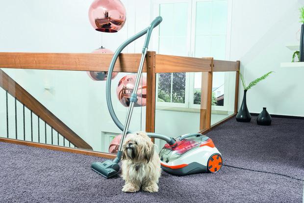 Фотография: Спальня в стиле Лофт, Советы, уборка дома, Thomas, быстрая уборка, уборка шерсти, домашние животные, как убрать шерсть – фото на INMYROOM
