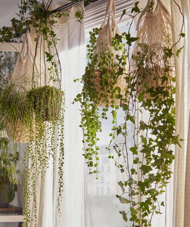 Фотография: Балкон в стиле Скандинавский, Советы, Сад, маленький сад, мини-огород на балконе, ИКЕА, идеи для сада – фото на INMYROOM