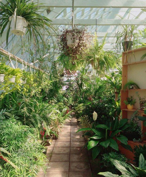 Фотография: Флористика в стиле , Ландшафт, Советы, Дом и дача, дачный участок, дача весной, как выбрать растения для сада, растения – фото на INMYROOM