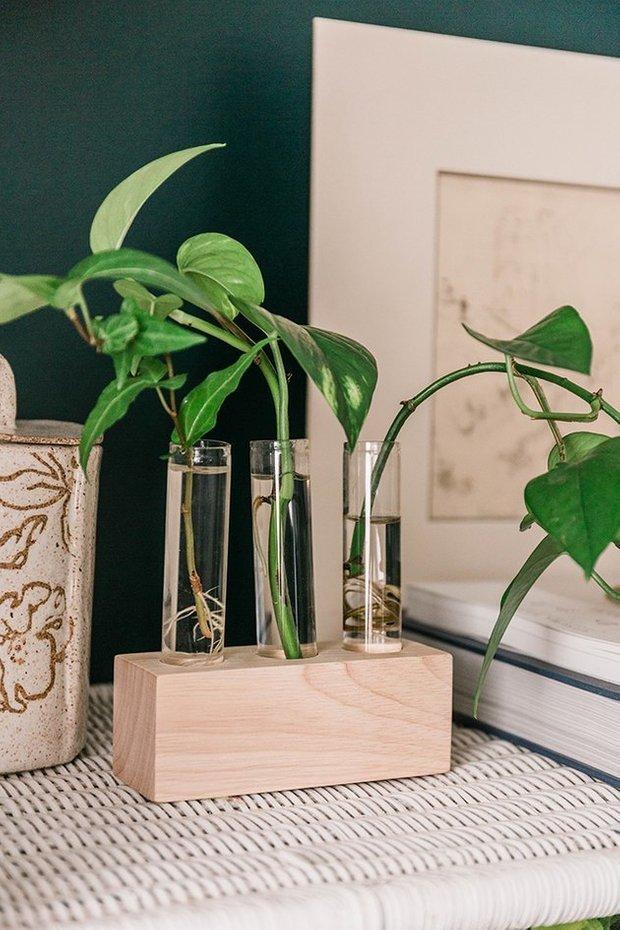 Фотография:  в стиле , Декор интерьера, DIY, Флористика, Декор, Советы, бюджетный декор, handmade декор – фото на INMYROOM