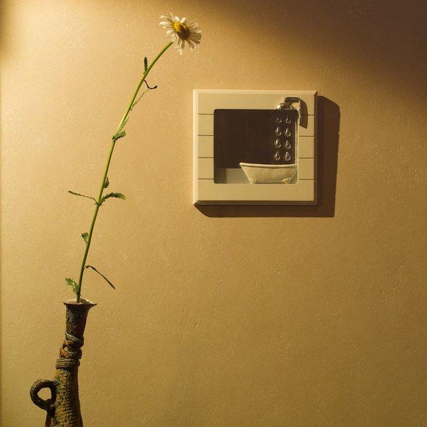 Фотография: Декор в стиле Современный, Декор интерьера, Флористика, Декор дома, Марат Ка, Зимний сад – фото на INMYROOM