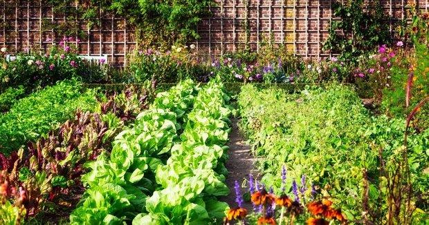 Дизайн: Eugene Garden Design
