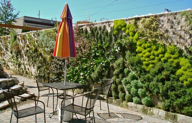 Фотография: Флористика в стиле , Кухня и столовая, Ландшафт, Стиль жизни, Дача, Для дачи и сада – фото на INMYROOM