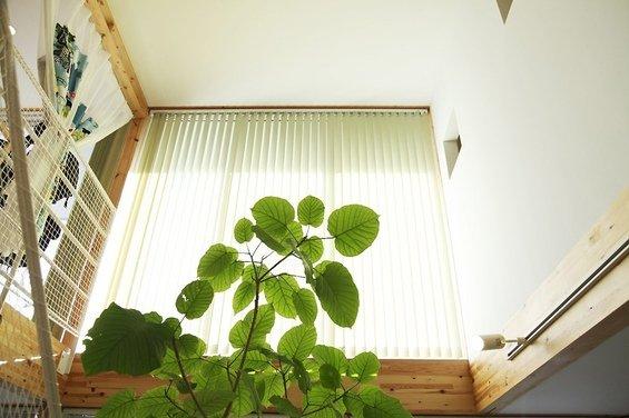 Фотография: Балкон в стиле Минимализм, Дом, Дома и квартиры, Япония – фото на InMyRoom.ru