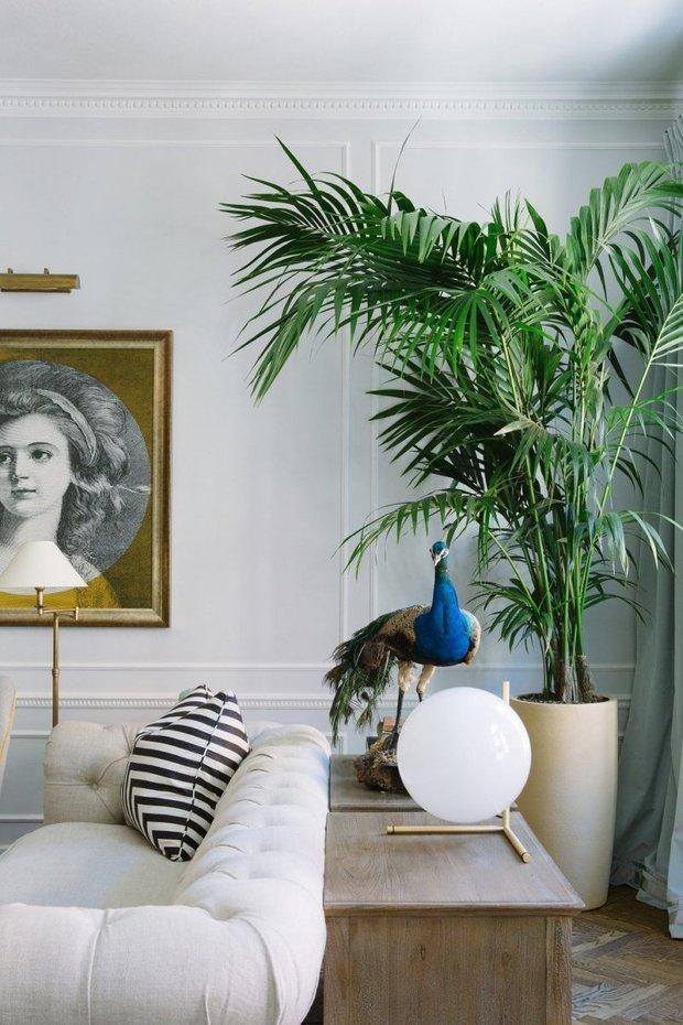 Фотография:  в стиле , Атмосфера в доме – фото на INMYROOM