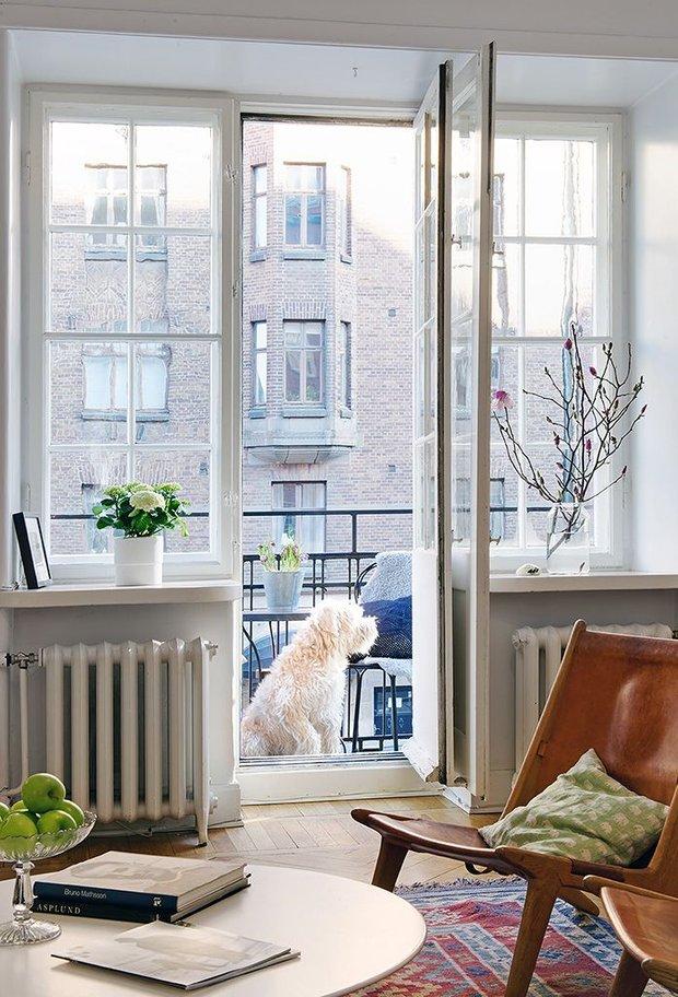 Фотография:  в стиле , Советы, Ирина Симакова, феншуй в интерьере, как оформить квартиру по правилам феншуй – фото на INMYROOM
