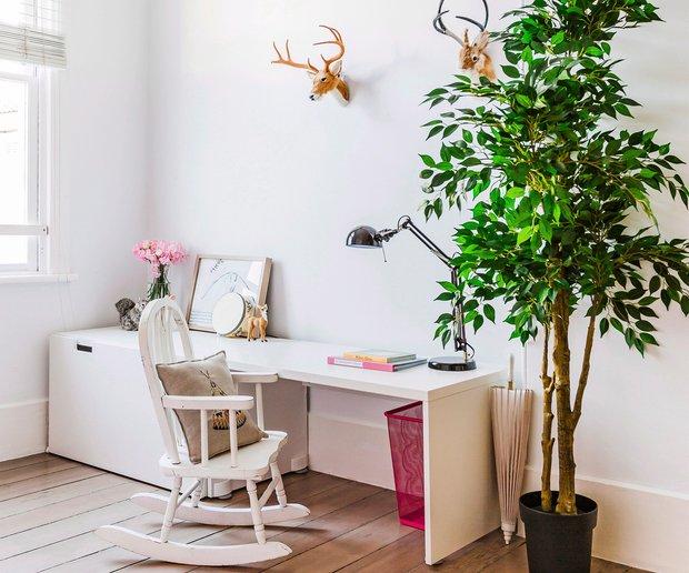 Фотография: Детская в стиле Скандинавский, Декор интерьера, Советы, растения для ленивых, растения для интерьера – фото на INMYROOM