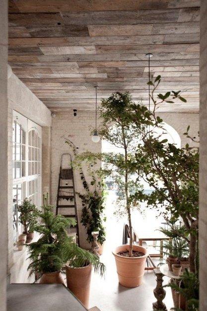 Фотография: Флористика в стиле , Кухня и столовая, Дизайн интерьера – фото на INMYROOM