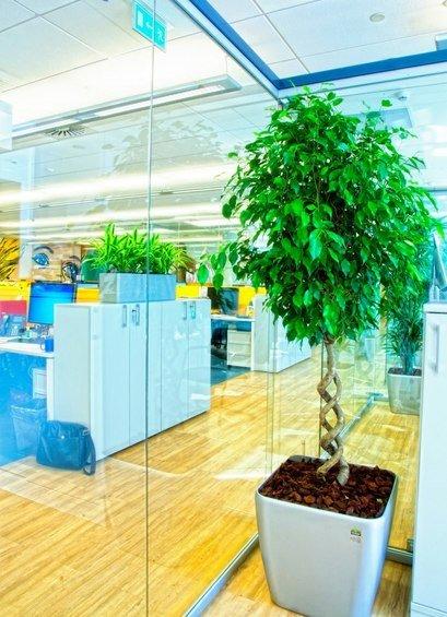 Фотография: Прочее в стиле Современный, Декор интерьера, Офисное пространство, Ландшафт, Стиль жизни – фото на INMYROOM