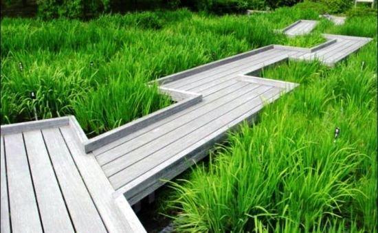 Фотография:  в стиле , Ландшафт, Советы, садовая дорожка, как сделать дорожку в саду, идеи садовых дорожек – фото на InMyRoom.ru