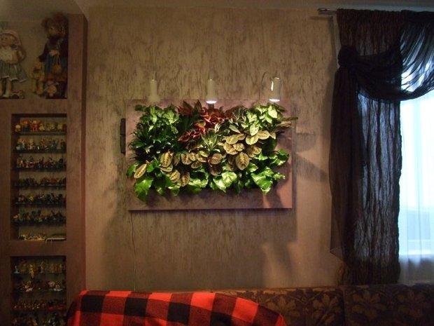 Фотография: Флористика в стиле , Квартира, Дома и квартиры, Фитостены – фото на INMYROOM