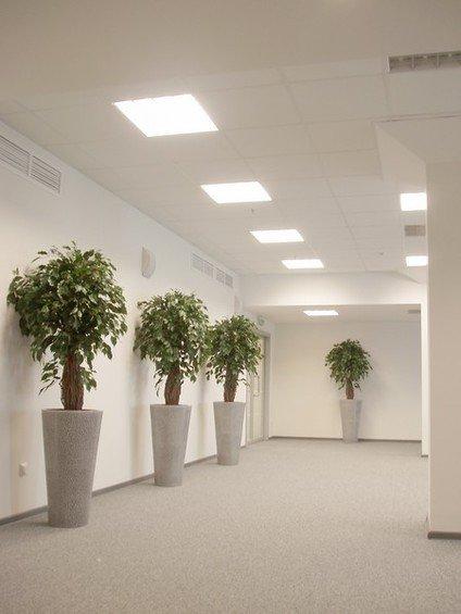 Фотография: Офис в стиле Современный, Декор интерьера, Офисное пространство, Ландшафт, Стиль жизни – фото на INMYROOM