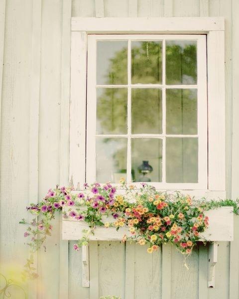 Фотография: Флористика в стиле , Декор, Дача, Дом и дача – фото на INMYROOM
