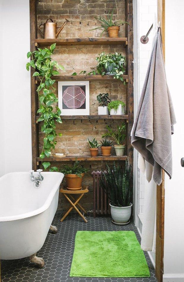 Фотография: Ванная в стиле Скандинавский, Флористика, Советы, Дача, ландшафтные работы, вертикальное озеленение – фото на INMYROOM
