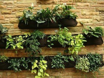 Фотография: Флористика в стиле , Балкон, Стиль жизни – фото на INMYROOM