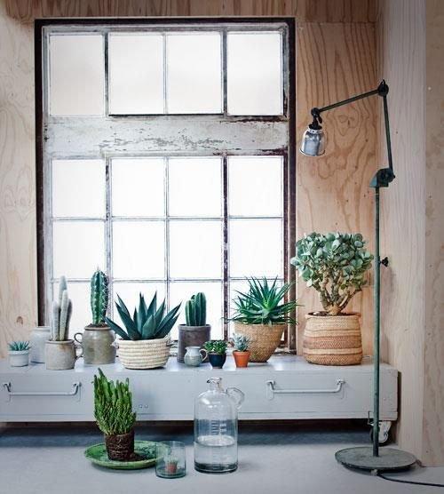 Фотография: Декор в стиле Лофт, Декор интерьера, Квартира, Советы, Подоконник, Окно – фото на INMYROOM