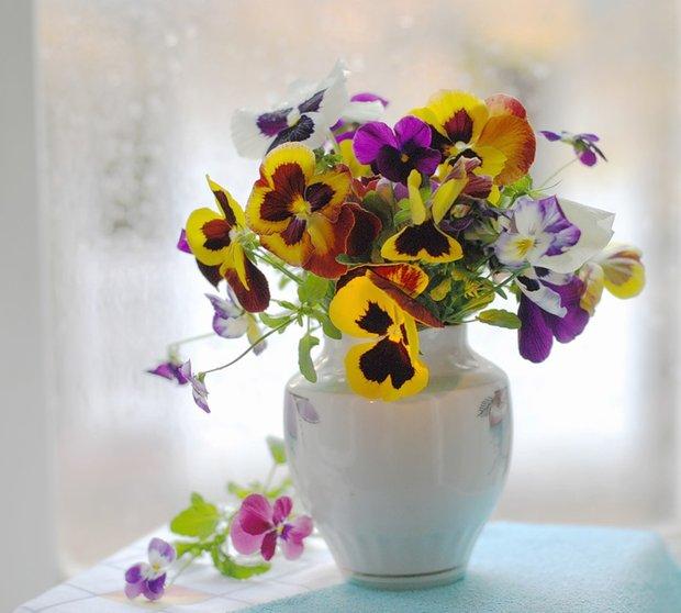 Фотография: Флористика в стиле , Декор интерьера, Дом, Стиль жизни, Цветы – фото на INMYROOM