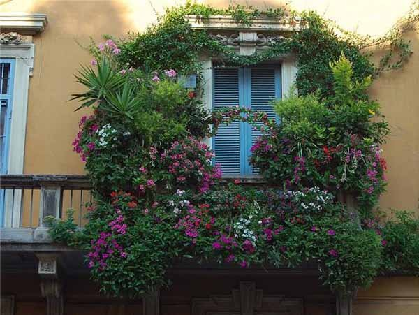 Фотография: Флористика в стиле , Балкон, Ландшафт, Декор, Терраса, Советы, Мария Шумская, Есения Семипядная, элегантный городской балкон, винтажные вещи на балконе, восточный декор для балкона, балкон в средиземноморском стиле, ландшафтный дизайн для балкона, горизонтальное озеленение, хвойные растения на балконе – фото на INMYROOM