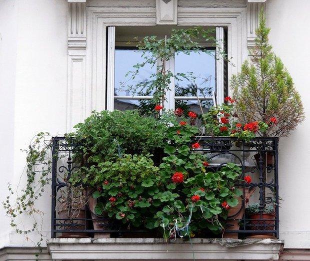 Фотография: Флористика в стиле , Балкон, Декор интерьера, Советы, идеи оформления балкона, как оформить балкон, освещение балкона, декор для балкона, полезные мелочи для балкона – фото на INMYROOM