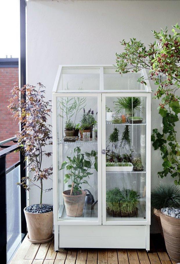 Фотография: Флористика в стиле , Балкон, Дом, Дома и квартиры – фото на INMYROOM