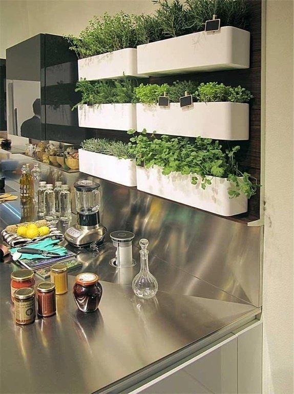 Фотография: Флористика в стиле , Малогабаритная квартира, Квартира, Стиль жизни, Зимний сад – фото на INMYROOM