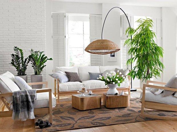 Фотография: Гостиная в стиле Эко, Декор интерьера, Декор дома, Цветы – фото на INMYROOM