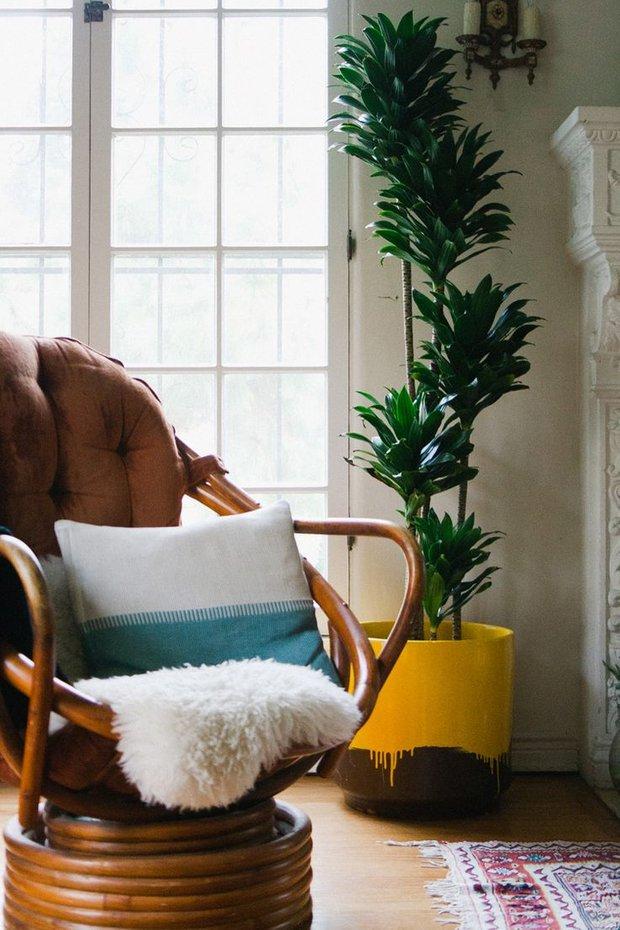 Фотография: Декор в стиле Скандинавский, Декор интерьера, Флористика, Советы – фото на INMYROOM