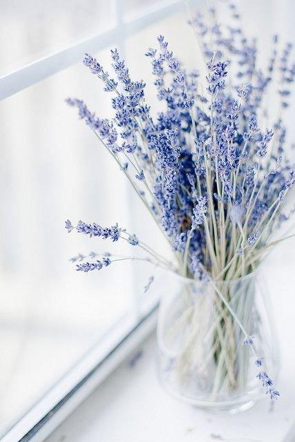Фотография: Кухня и столовая в стиле Лофт, Флористика, Советы, Цветы, кустарники – фото на INMYROOM