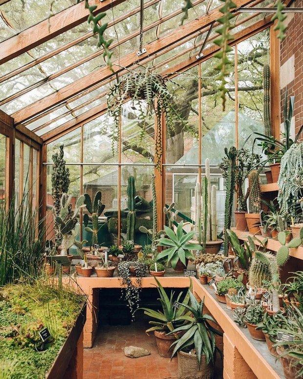 Фотография:  в стиле , Ландшафт, Советы, Дом и дача, дачный участок, дача весной, как выбрать растения для сада, растения – фото на INMYROOM
